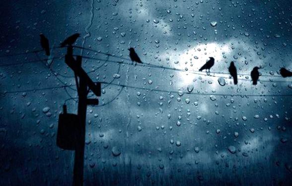 անձրև